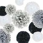 "VIDAL CRAFTS 20 Pcs Tissue Paper Pom Poms Kit 14"", 10"", 8"","